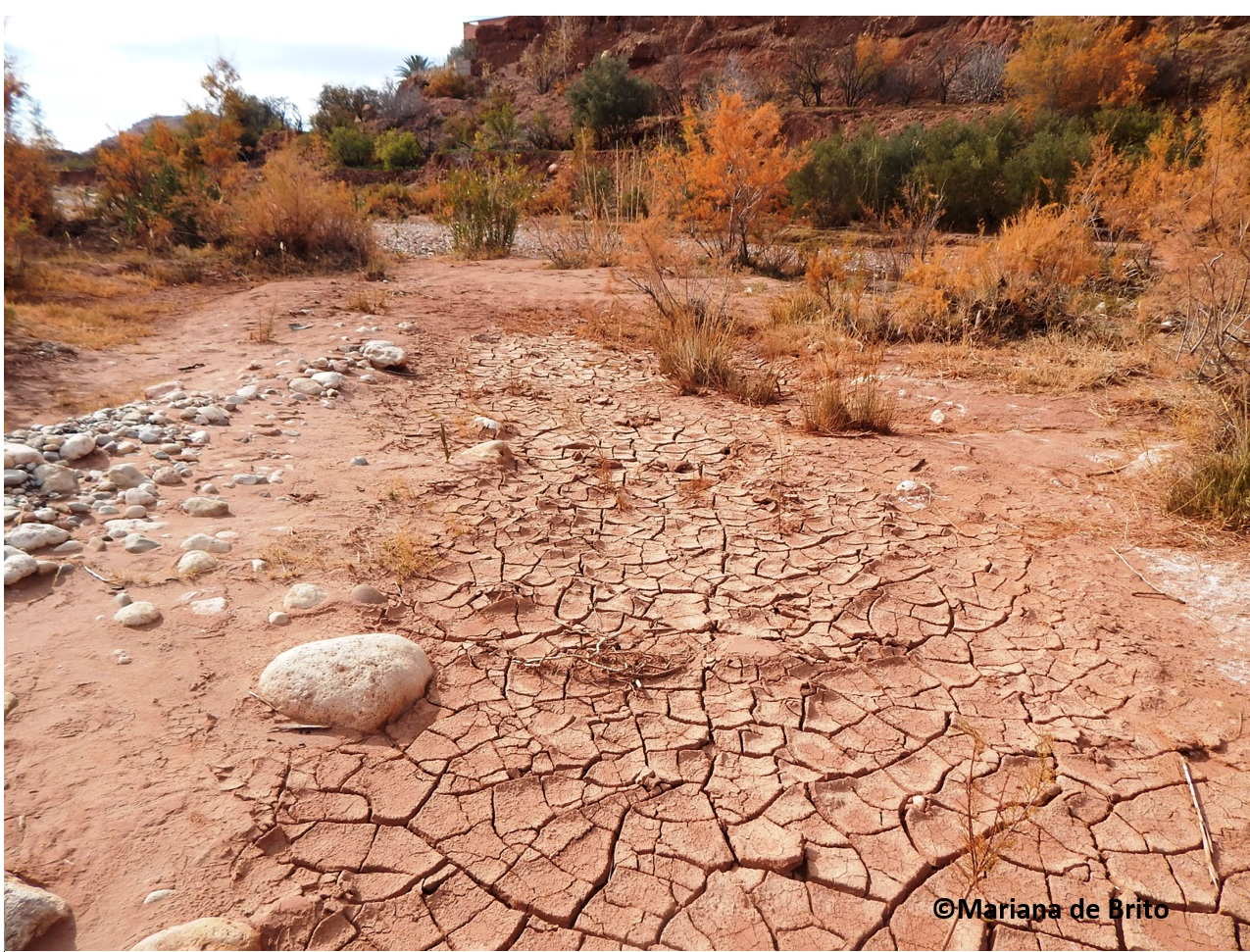 2017_08_dried river bed Morocco.JPG